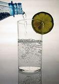 Fachinformationen - Wasser unser wichtigstes Lebensmittel